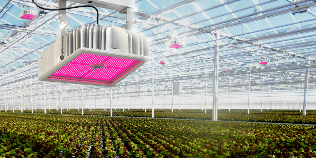 hyperion led grow light
